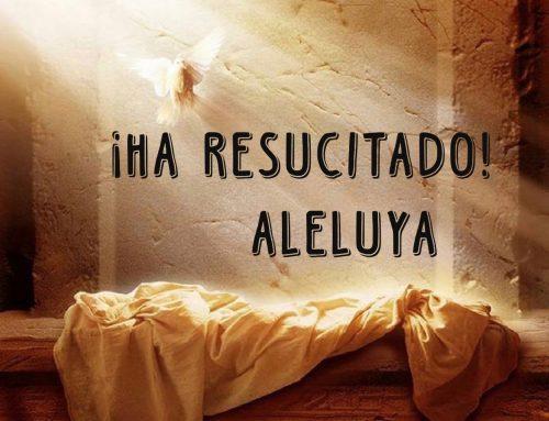 Felicitación de Pascua – Un anuncio a las afueras