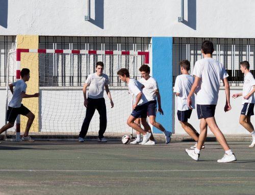 Novedad | Actividades deportivas escolares