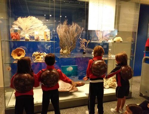 Visita al museo de ciencias naturales segundo de primaria